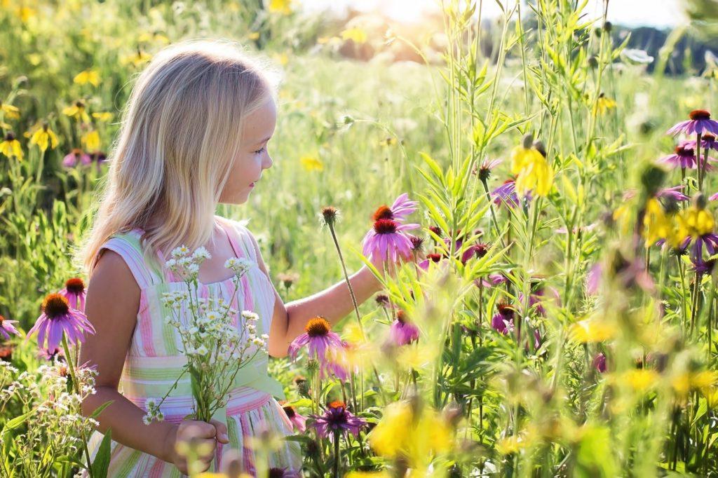 Santé Beauté Bien-être au Naturel